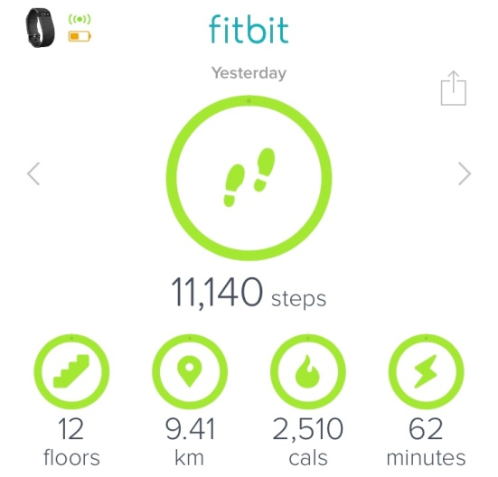 Fitbit Daily Goals